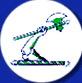 axe brand logo.jpg